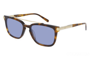 Sunglasses Brioni True Luxury BR0078S-002