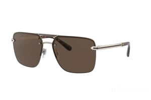 Sunglasses Bulgari BV 5054 (202273)