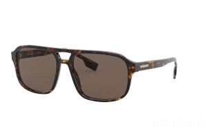 Sunglasses Burberry Francis BE 4320 (300273)