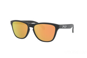 Sunglasses Oakley Junior Frogskins xs OJ 9006 (900617)