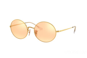 Occhiali da Sole Ray-Ban Oval Mirror Evolve RB 1970 (001/B4)