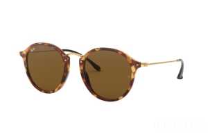 Sunglasses Ray Ban Round Fleck RB 2447 (1160)