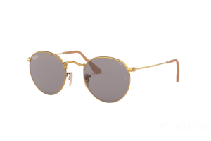Occhiali da Sole Ray Ban Round metal Evolve RB 3447 (9064V8)