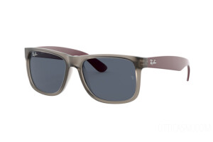 Sunglasses Ray-Ban Justin Color Mix RB 4165 (650987)