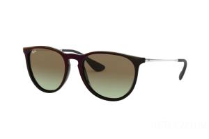 Sunglasses Ray Ban Erika RB 4171 (6316E8)