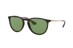 Sunglasses Ray Ban Erika RB 4171 (6393/2)