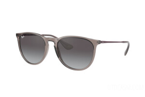 Occhiali da Sole Ray-Ban Erika Color Mix RB 4171 (65138G)