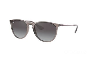 Sunglasses Ray-Ban Erika Color Mix RB 4171 (65138G)