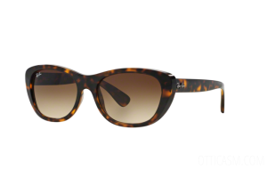 Sunglasses Ray Ban RB 4227 (710/13)