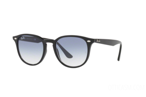 Sunglasses Ray Ban RB 4259 (601/19)