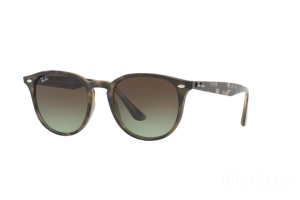Sunglasses Ray Ban RB 4259 (731/E8)