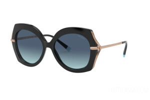Sunglasses Tiffany TF 4169 (80019S)