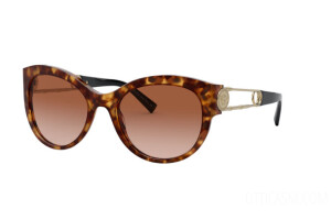 Sunglasses Versace VE 4389 (511913)