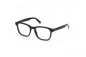 Eyeglasses Web WE5372 (001)