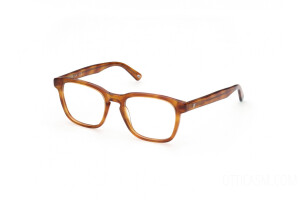 Eyeglasses Web WE5372 (053)