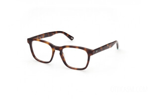 Eyeglasses Web WE5372 (52A)