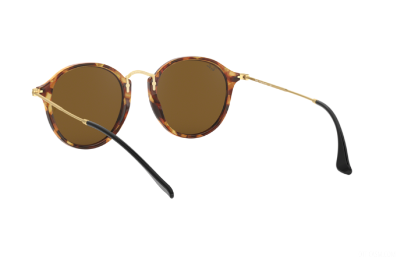 Sunglasses Unisex Ray-Ban  RB 2447 1160