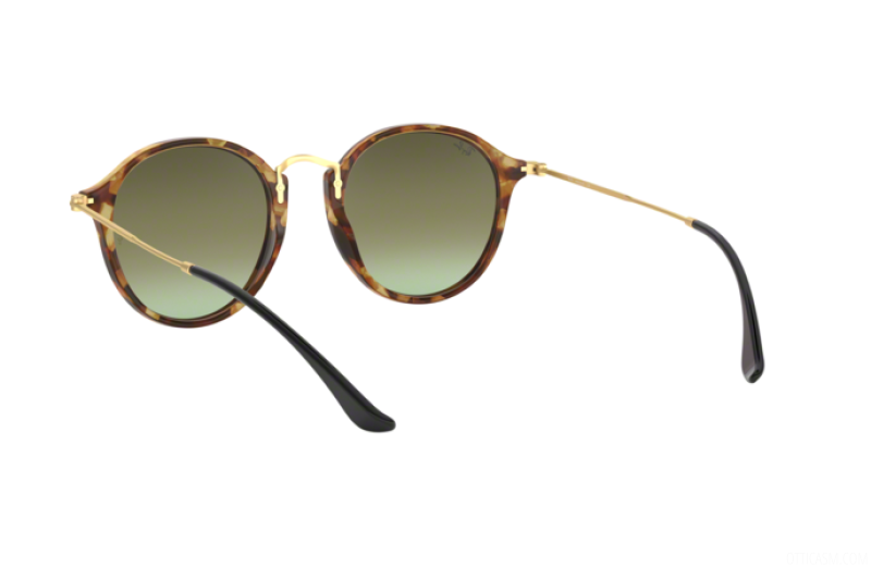 Sunglasses Unisex Ray-Ban  RB 2447 11607O