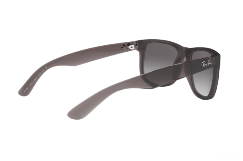 Sunglasses Unisex Ray-Ban  RB 4165 606/U0