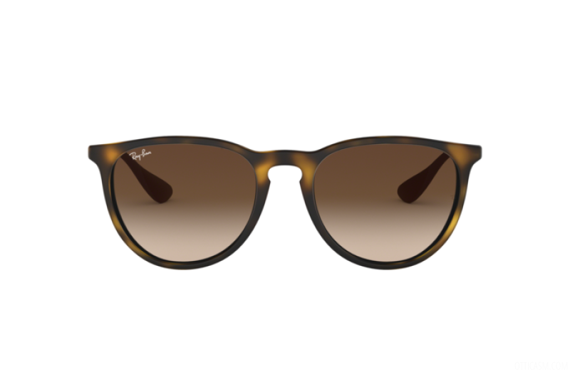 Sunglasses Unisex Ray-Ban  RB 4171 865/13