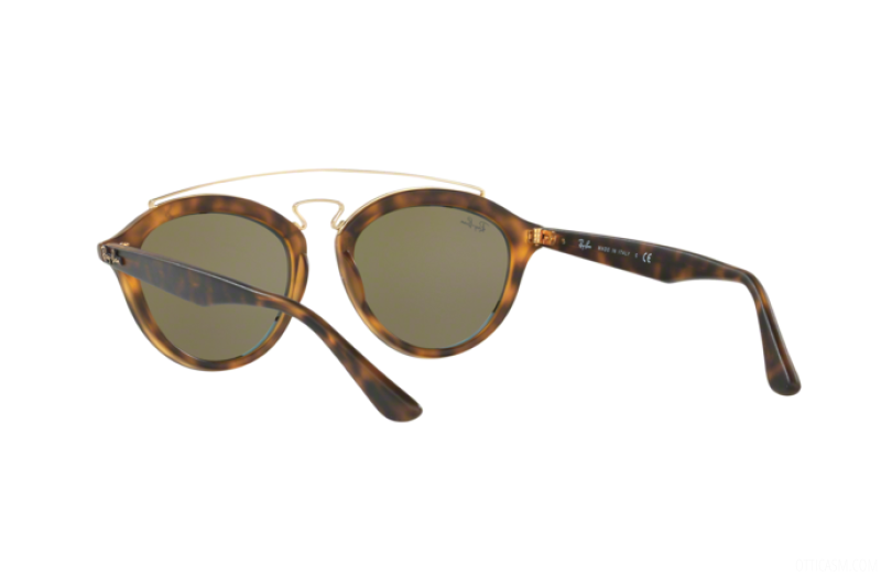 Sunglasses Unisex Ray-Ban  RB 4257 609255