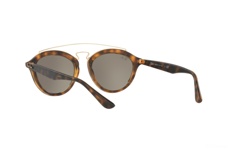 Sunglasses Unisex Ray-Ban  RB 4257 60925A