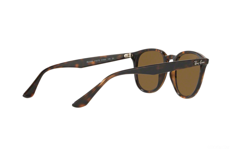 Sunglasses Unisex Ray-Ban  RB 4259 710/73